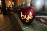 """Fã presta homenagem escrevendo """"Adeus"""" em uma mação"""